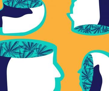 CBD vs. THC: ¿Cuál es la diferencia?