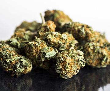 Cómo ayudar a los consumidores a comprender la cantidad de THC y CBD en su cannabis