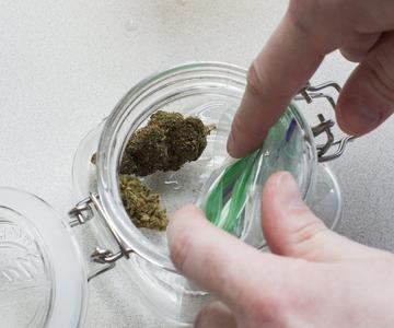 Cómo rehidratar los brotes secos de cannabis