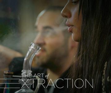 El arte de la extracción, Parte 6: Los expertos hablan sobre los extractos de cannabis