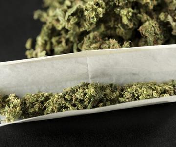 El cannabis en la historia: El viaje de la articulación