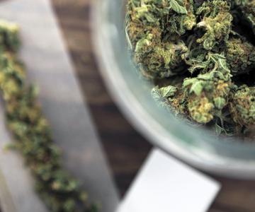 ¿Es el cannabis una'droga de entrada'?