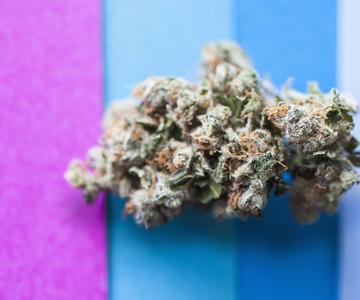 Microdosis de cannabis: Beneficios sin el zumbido