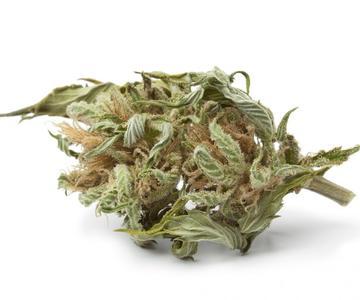 ¿Qué es el cannabis'Larf' y para qué sirve?