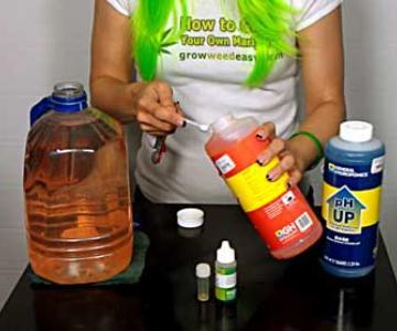 Cómo Comprobar el pH y Parar las Deficiencias de Nutrientes de Cannabis