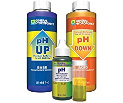 Get a bottle of PH Up and Down from Amazon.com